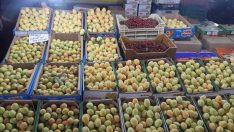 Malatya'da Kayısı Çarşı Pazar Tezgahlarına İndi